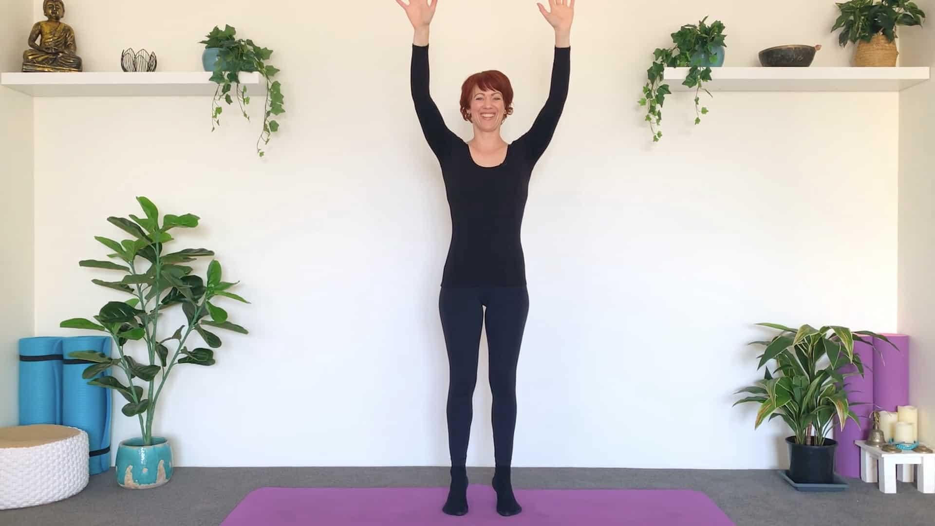 Balancing Heel Lifts